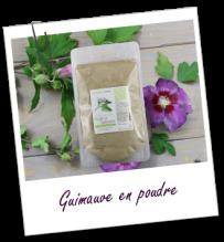 FT_trombone_Extrait-plante_Guimauve-poudre