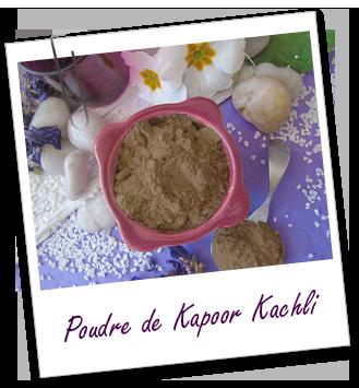 FT_trombone_Extrait-plante_poudre-kapoor-kachli_0